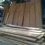 bahan baku kayu jati